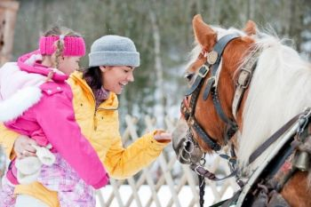 pferdeschlittenfahrten02