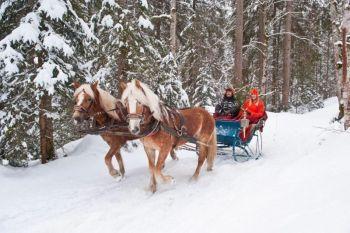 pferdeschlittenfahrten03